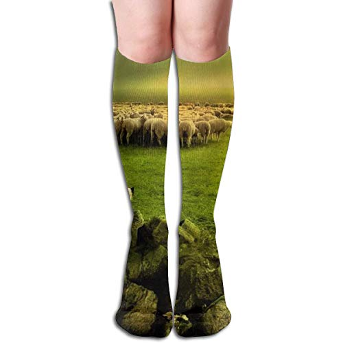 Sheep Dog Kostüm Kindes - Gped Kniestrümpfe,Socken, Women's Socks Knee High Thigh Long Stocking Dog Sheep Farm Winter Warm Sexy Stocks