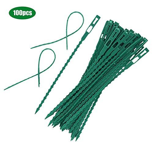 Esplic 100 STÜCKE Mehrzweck Kabelbinder, Home Wiederverwendbare Befestigung Kabelbinder, Rebe Kletterpflanze Feste Schnallen (Grün)