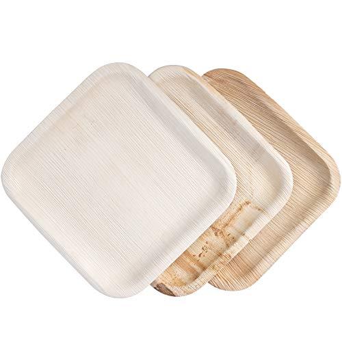 IMSCO Palmblatt-Einwegteller | 25 Teller quadratisch 25x25cm | hochwertig, unbehandelt, umweltfreundlich, biologisch, kompostierbar, Wegwerf-Geschirr
