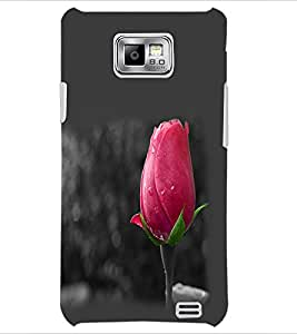 PrintDhaba Rose Bud D-2360 Back Case Cover for SAMSUNG GALAXY S2 (Multi-Coloured)