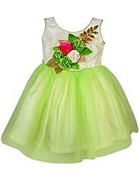 Jennygrace Baby Girl's Party Wear Frock DressJGG-147