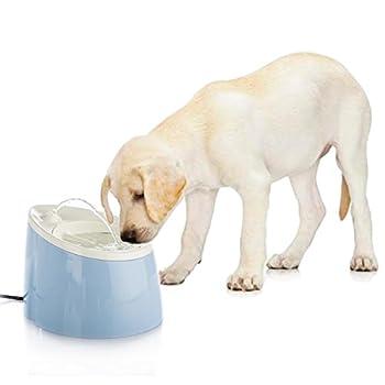 Happy & Polly Fontaine à eau Distributeur d'eau 1.8L pour petit chat, chien
