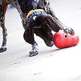 Kong 47522 Hundespielzeug Wobbler, befüllbar mit Snacks - 2