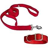 S.Blaze 1 INCH RED Designed Dog Collar Belt, 1.5M-2M LENGTHY Dog Dog Collar & Leash (Medium, Multi Color)