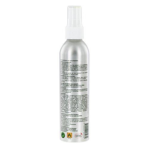 Naturactive Assaini'Spray 200 ml
