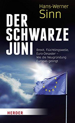Der Schwarze Juni: Brexit, Flüchtlingswelle, Euro-Desaster - Wie die Neugründung Europas gelingt
