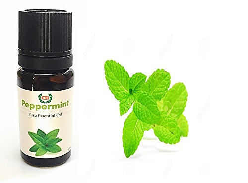 Grasse International -Peppermint Oil 10 ml - Pure and Therapeutic Grade - Exceptional Choice for Aromatherapy, Massage Suitable for All Skin Types Pure Essential Oil (10 ML)