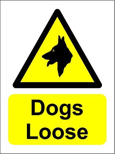 Hunde lose Schild (Sticker Selbstklebend Label-Zeichen) 200mm x (Hund Zeichen)