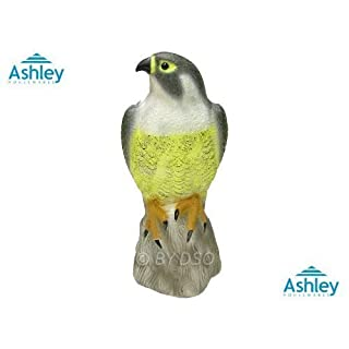 Ashley Housewares Falcon Birds of Pray Bird Deterrent BD102