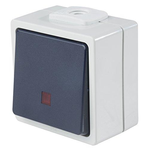 as - Schwabe Taster/Schließer beleuchtet mit 2 Leitungseinführungen, IP 54 Aussenbereich, grau, 62453