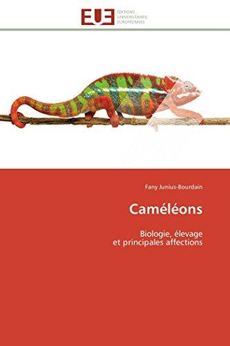 Caméléons