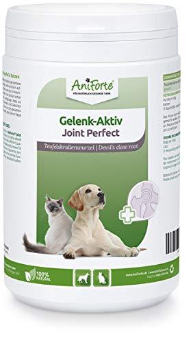 AniForte Gelenk Aktiv Teufelskralle Gelenkpulver für Hunde und Katzen 500g - 100{c6f060c5f4cfbdfbd7849e2457beee837f5b8e89327080ca287f4b55b37b1900} Naturprodukt Gelenke Pulver, Hohe Akzeptanz beim Hund und Katze, Pulver statt Kapseln oder Tabletten