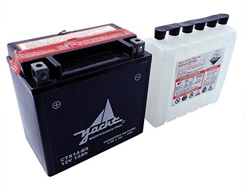 Batteria YACHT CTX14-BS / YTX14-BS per HONDA VT1100C2 Shadow Sabre 1100 ccm Anno di costruzione 00-07