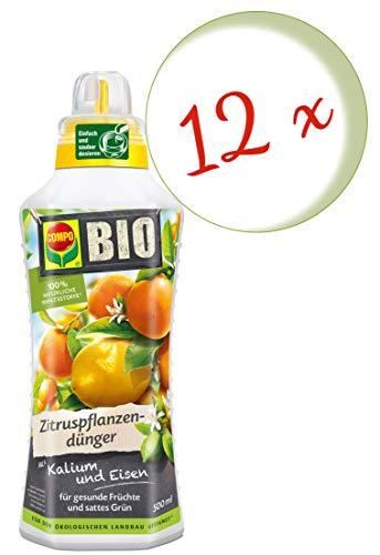 Compo Zitruspflanzendünger für
