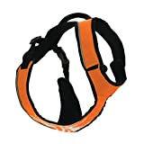 Zolux Canisport - Harnais Rando/Jogging M Orange