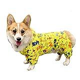 BbearT - Chubasquero para Mascotas, diseño Divertido con Capucha y Capucha Impermeable, para Perros pequeños y Cachorros