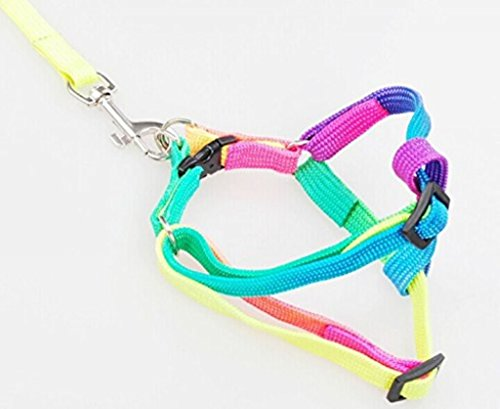 Price comparison product image ewinever(R) 1pcs Pet Nylon Rope Lead Chain Adjustable Dog Harness Leash Collar Set -Rainbow Colorful