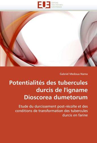 Potentialités des tubercules durcis de l''igname dioscorea dumetorum par Gabriel Medoua Nama