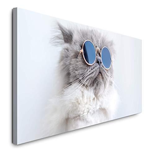 Paul Sinus Art GmbH lustige Katze 120x 50cm Panorama Leinwand Bild XXL Format Wandbilder Wohnzimmer Wohnung Deko Kunstdrucke
