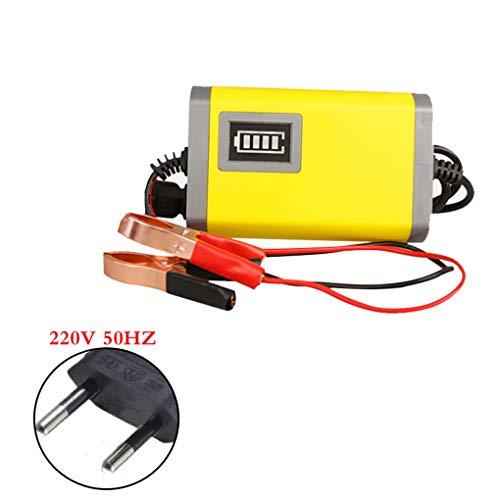Preisvergleich Produktbild Timlatte Universal-12V 2A Motorrad-Ladegerät LED-Anzeige Intelligente Automotive Motorrad-Auto-Schnelllade Batterien EU-Stecker