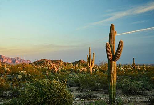 EdCott 5x3ft West Wild Cactus Fotografie Hintergrund Südwesten Natürlichen Berg Sonnenuntergang glühen Landschaft Wüste Stacheligen Cholla Hintergrund Porträts Travel Wallpaper Fotostudio Requisiten