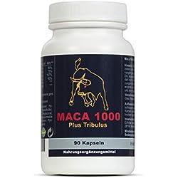Maca 1000 plus Tribulus, Maca und Tribulus, 90 Kapseln, 1er Pack (1x 74g)