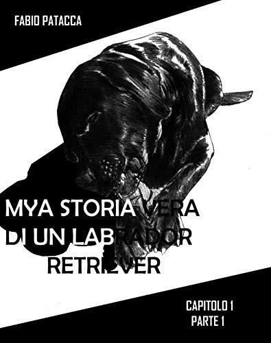 MYA STORIA VERA DI UN LABRADOR RETRIEVER: CAPITOLO-PARTE1