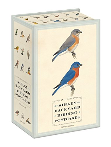 Sibley Backyard Birding Postcards: 100 Postcards (Sibley Birds) (Der Bird-box)