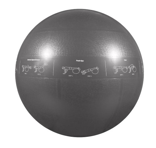Gofit professional stability ball by