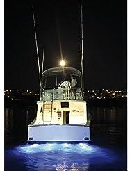 Projecteur sous-marine avec 6 LED bleu