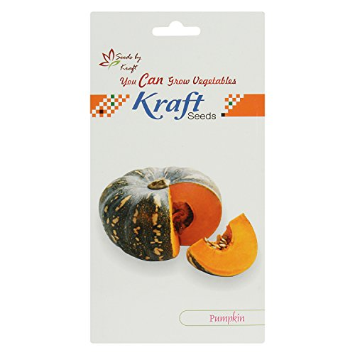 Pumpkin Seeds (4 gm, Pack of 2) by Kraft Seeds  available at amazon for Rs.85