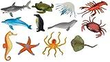 Set of 12 Sea Creatures