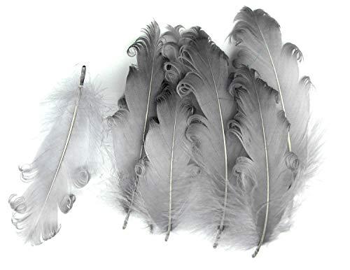 PANAX Echte extravagante Gänsefedern mit lockigen Spitzen in Grau - Federnlänge ca. 12-18cm - 16 Farbvarianten, Ideal zum Basteln, Dekorationen, Fasching, Karneval, Hochzeiten, Hüte