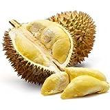 NB 10er Liquid Depots fruchtiger Durian Geschmack