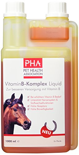 PHA Pferd, Ergänzungsfutter zur Unterstützung des Nervensystems und Stoffwechselfunktion, Flüssigkeit, Vitamin B-Komplex Liquid, 1000 ml