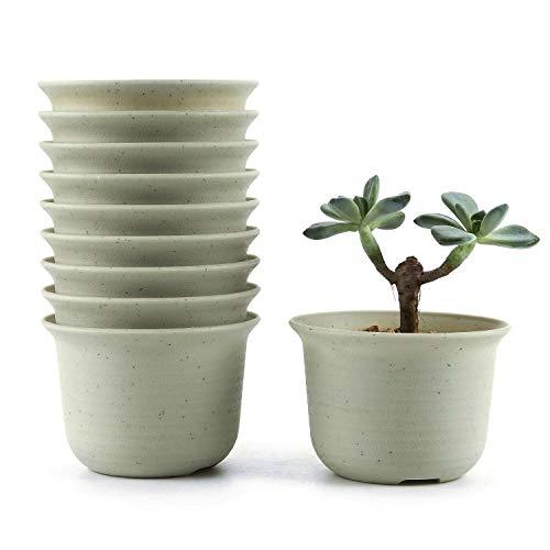 T4U 9CM Set of 10 Rotondo di plastica Plastica Vaso di Fiori Pianta Succulente Cactus Vaso di Fiori Giardino i vasi di Fiori vasi di Piante.