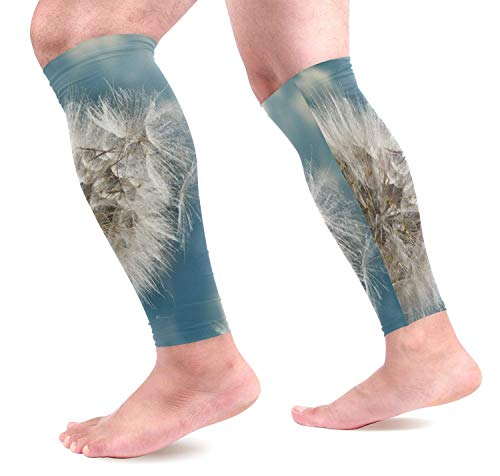 Wfispiy Dandelion Loosing Seeds The Wind Calf Compression Sleeves Shin Splint Support Leg Protectors Calf Pain Relief for Running, Cycling, Travel, Sports for Men Women (1 Pair) -