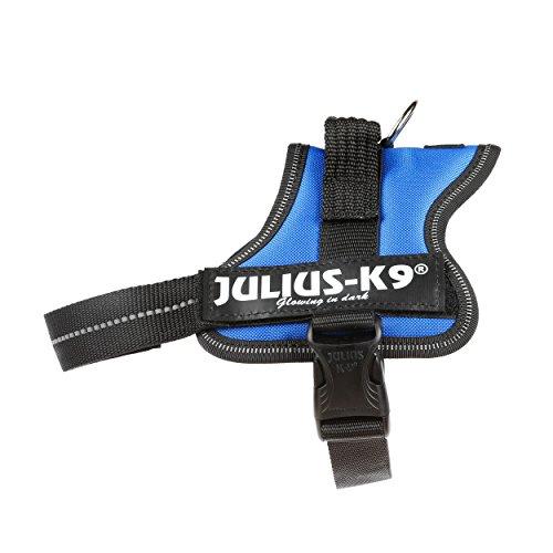 Julius-K9, 162B-M, Powerharness, Taille: Mini, Bleu