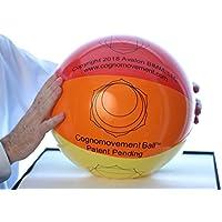 Cognomovement Ball von körperlichen oder geistigen Übungen preisvergleich bei billige-tabletten.eu