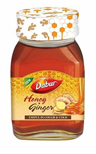 Dabur Honey, Ginger, 100g  available at amazon for Rs.69