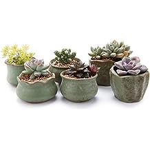 T4U Conjunto de 6 Conjuntos de serie de primavera Cerámicos Planta Maceta Suculento Cactus Planta Maceta Planta Contenedor Vivero Maceta Macetas de jardín Macetas Envase