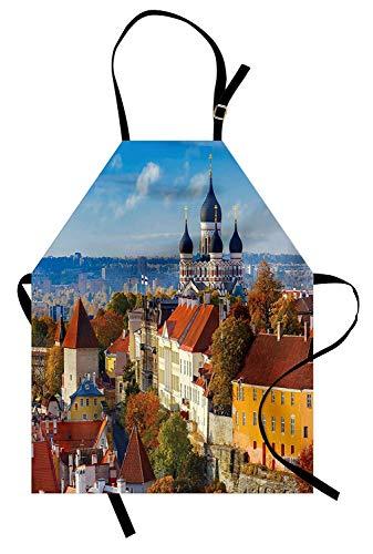 Modernes Schutzblech, Toompea Hill mit historischem Turm Russische Kathedrale Altstadt Kultur Wahrzeichen Bild, Unisex-Küche Latzschürze mit verstellbarem Hals zum Kochen Backen Gartenarbeit, ()