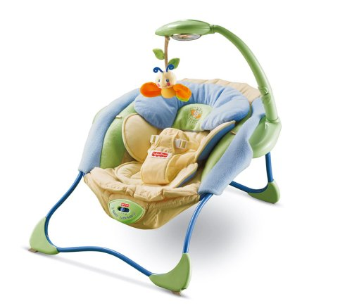 Fisher-Price Modelo J6979-0 Hamaca bebe