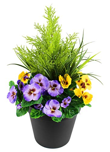 Greenbrokers Limited Fioriera Artificiale (60 cm) con Viole Gialle e Viola e conifero/Cedro Arte topiaria in Vaso Nero