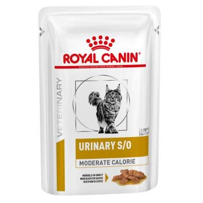 Royal Canin Urinary moderate calorie Lachs 48x100 g