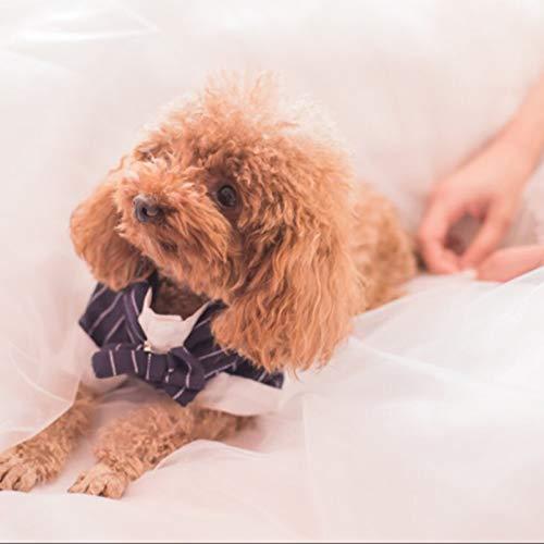 Bear Teddy Kostüm Cute Dog - lipanpan Pet Dog Clothes Teddy Than Bear VIP small Dog Suit Wedding Dress cat Suit Spring and Autumn