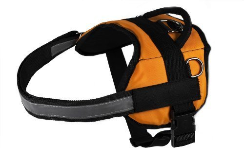 Dean & Tyler DT Works Assistance Dog Dog Harness, Fits Girth Size 21-Inch to 26-Inch, X-Small, Orange/Black 2