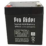 Pro Rider AGM Elektro-Golfwagen-Akku (12 V, 4,5 Ah)