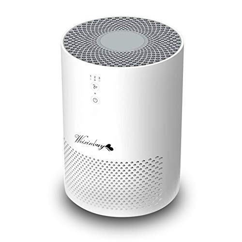 Winxinbuy Air Purifier, Triple Filtration and Three Adjustable Speeds, Silent, with HEPA Filter and Activated Carbon, Remove Bacteria, Pollen, Dust, Cigarette Smoke, and Household Odor