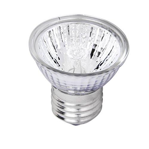 220-240V-25W-Mini-Spot-Halogne-Rflecteur-Ampoule-Lampe-pour-Reptile